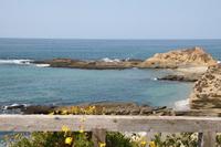 Laguna_beach_118